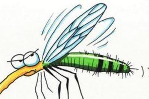 Szúnyogírtás