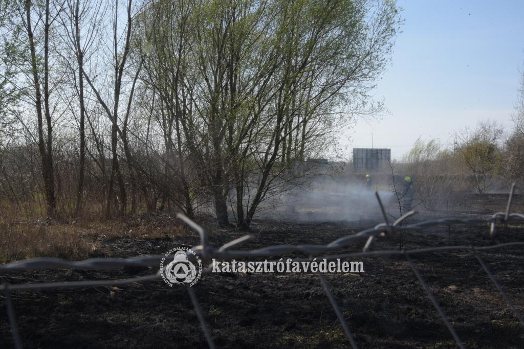 Két hektáron égett a nádas